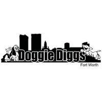 Buy One Day of Doggie Daycare and receive One Day for FREE!